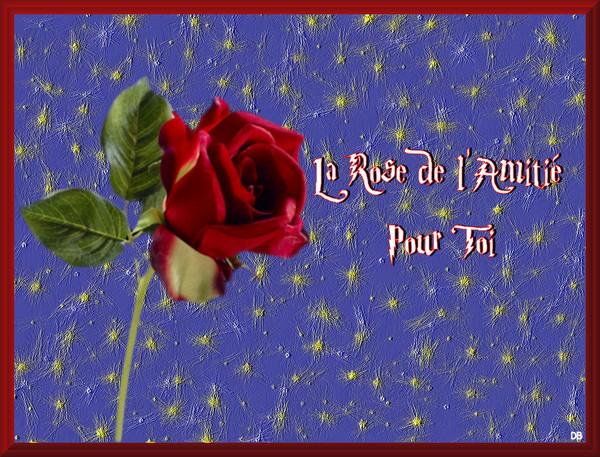 La Rose de l'Amitié : kdo pour vous