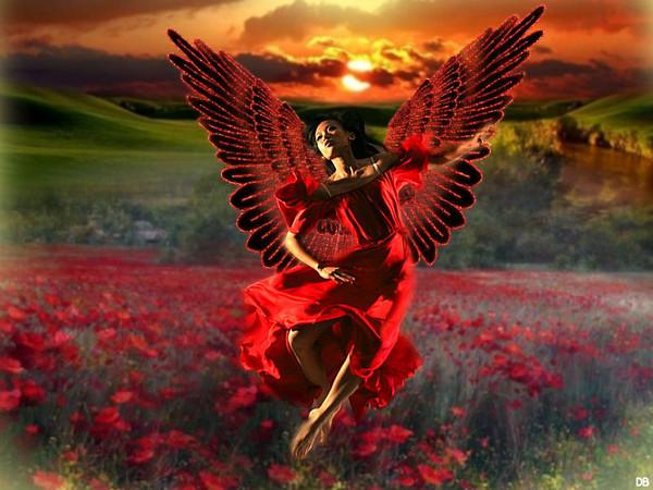 L'Ange de la Nature et de l'Harmonie : kdo pour vous