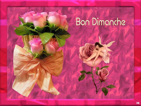 Bon Dimanche : kdo pour vous