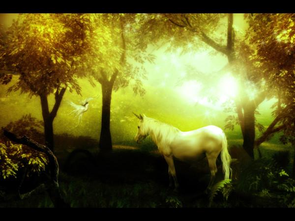 Licorne : wallpaper, fond d'écran, peinture, image, fond