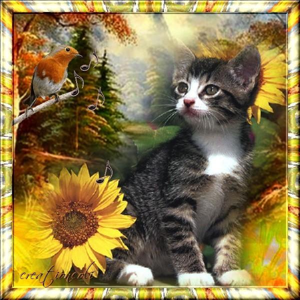Merveilleux chaton : créa de mon amie Martine