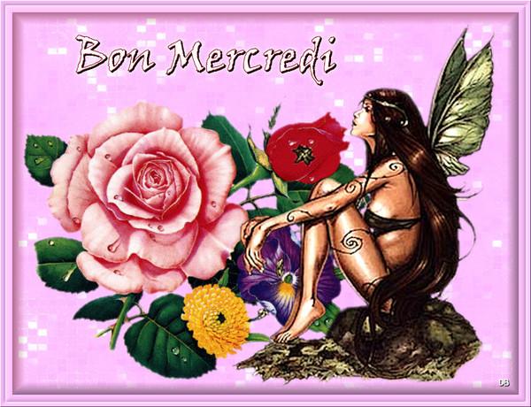 Bon Mercredi - fleurs - fée : kdo pour vous