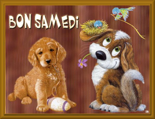 Bon Samedi : kdo pour vous
