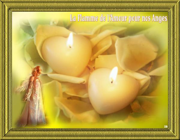 La Flamme de l'Amour pour nos Anges - Toussaint : kdo