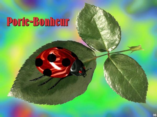 Porte-Bonheur : kdo pour vous