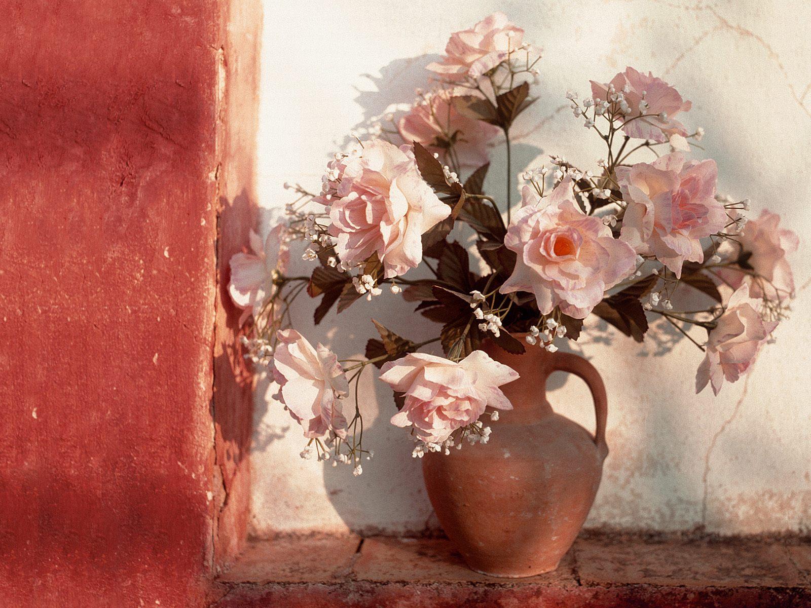 Bouquet De Fleurs Wallpaper Fond D Ecran Photo